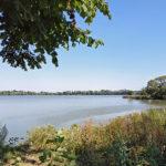 Bartošovický rybník